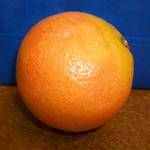 Profile picture of gunstantine