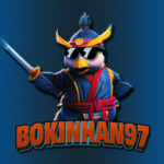 Profile picture of Bokinhan97